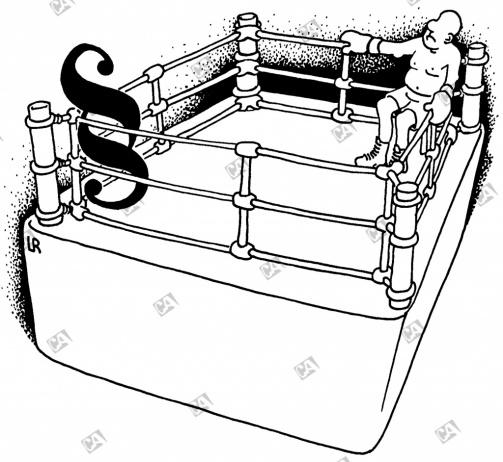 Der Gegner im Ring