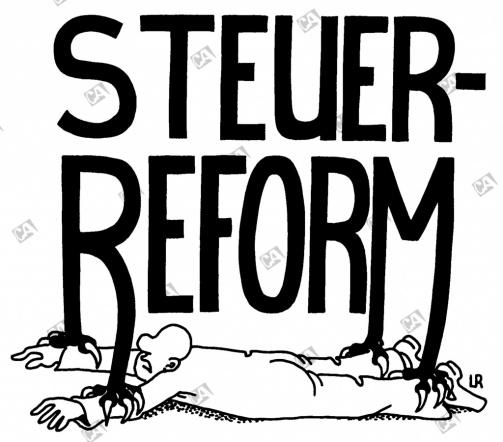 Im Griff der Steuerreform