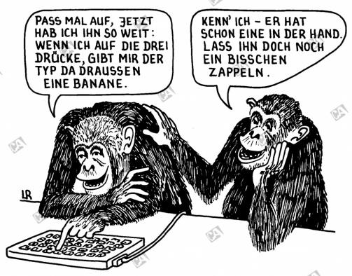 Zwei intelligente Affen