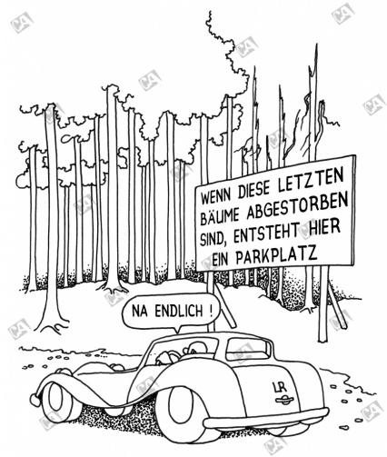 Baumsterben für Parkplätze