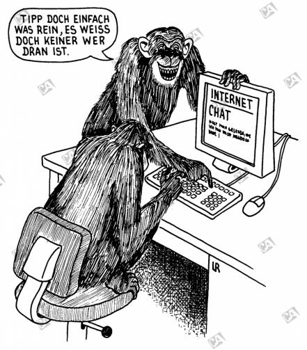 Affen am Computer