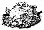 Ein fetter Bundesadler